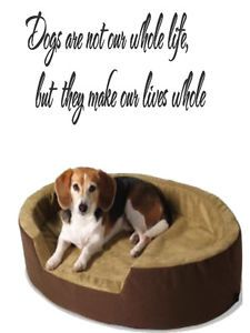 Dogs Are Funny Animal Quote Saying Room Kitchen Wall Art Decal Sticker Viny