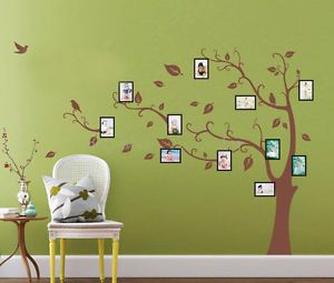 Huge Birds Vine Tree Photo Frame Wall Stickers Art Mural Children Kids Wallpaper