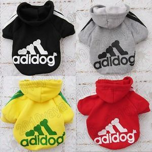 New Hoodie Sweater T Shirt Pet Puppy Dog Cat Coat Clothes for Small Dogs