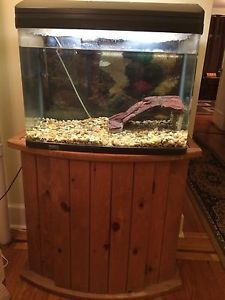 Complete 28 Gallon Huge Fish Tank Setup Plus Stand Filter Pump Lights Heater