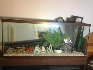 Aquiriums Lots of Accessories 2 55 Gallon Tanks Light Hood and Stand