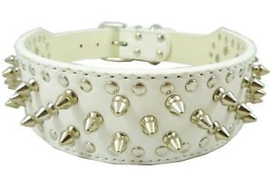 "19"" 22"" Neck Size Studded Spikes White Leather Dog Collar Large Breeds Doberman"