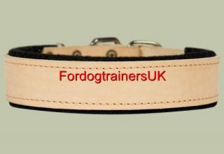 Padded Black Leather Dog Collar with Thick Felt C24