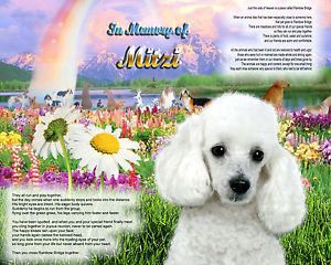 Dog Poem Rainbow Bridge