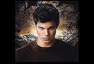 Jacob Black Wolf Pack Twilight Checkbook ID Card Cover