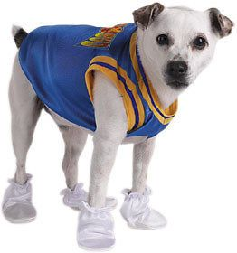 Air Bud Basketball Pet Halloween Costume Fits SM Dog
