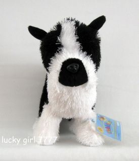 Webkinz Full Size Boston Terrier Puppy Dog w SEALED Code 4 Online Low SHIP