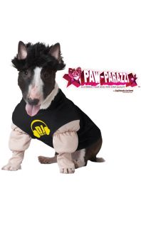 DJ Master Pawly Pet Dog Costume