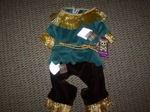 Scarecrow Pet Halloween Costume for Medium Dog New w Tags Cute