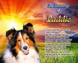 Dog Memorial Collie Sheltie Poem Personalized w Pets Name Unique Pet