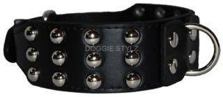 Black Leather Dog Collar Silver Studs Dane Malamute Akita Pitbull Rott Doberman