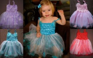Baby Girl Child Valentines Day Princess Fairy Tutu Dress Birthday Costume Photo