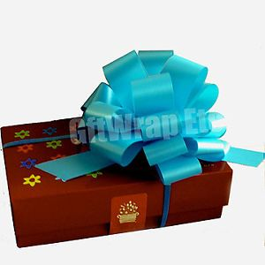 10 Turquoise Pull Bows Gift Baskets Party Decorations Wedding Floral Supplies