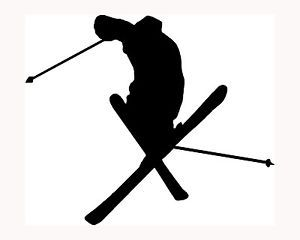 Skier Silhouette Sticker Ski Car Window Vinyl Decal Extreme Sports Snow Trick S3