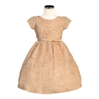 Sweet Kids Girls Size 8 Champagne Rosette Texture Mesh Easter Dress