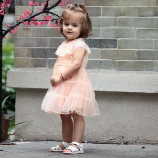 Baby Kid Toddler Girl Wedding Sweet Lace Ruffles Princess Onepiece Dress 6M 4yr