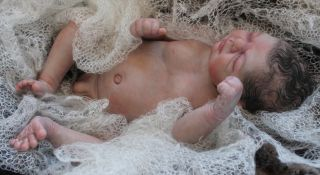 Beautiful Reborn Newborn Baby Boy Doll Precious Gift Samantha Rose Harker
