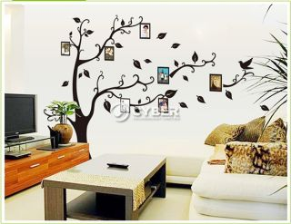 Photo Frames Tree DIY Removable Art Vinyl Wall Sticker Decor Mural Decal DZ88
