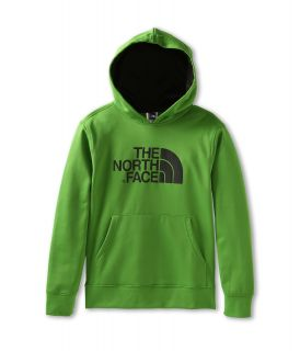 The North Face Kids Boys Logo Surgent Pullover Hoodie (Little Kids/Big Kids) Flashlight Green