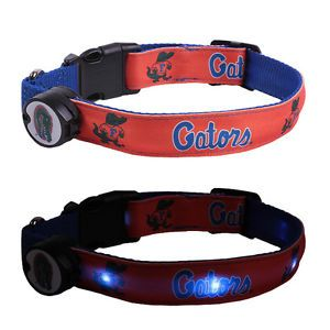 University of Florida Gators Lighted LED Pet Dog Collar Steady Glow or Flashing