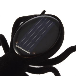 Solar Powered Spider Educational