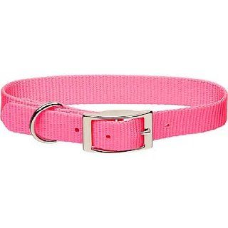 "Coastal Pet Metal Buckle Nylon Personalized Dog Collar in Neon Pink, 1"" Width"