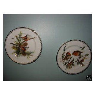 Royal Staffordshire Bone China Bird Plate  Dinner Plates