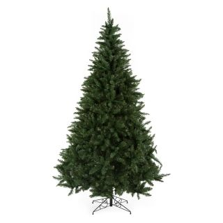 Classic Pine Full Unlit Christmas Tree   Christmas Trees