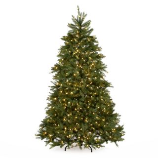7.5 ft. Dual Colored Pre Lit Dunhill Fir Hinged Tree   Christmas Trees