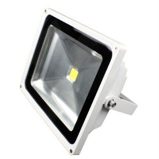 LunaSea Outdoor LED Flood Light   12V/50W/4500 Lumens   Cool White Sports & Outdoors